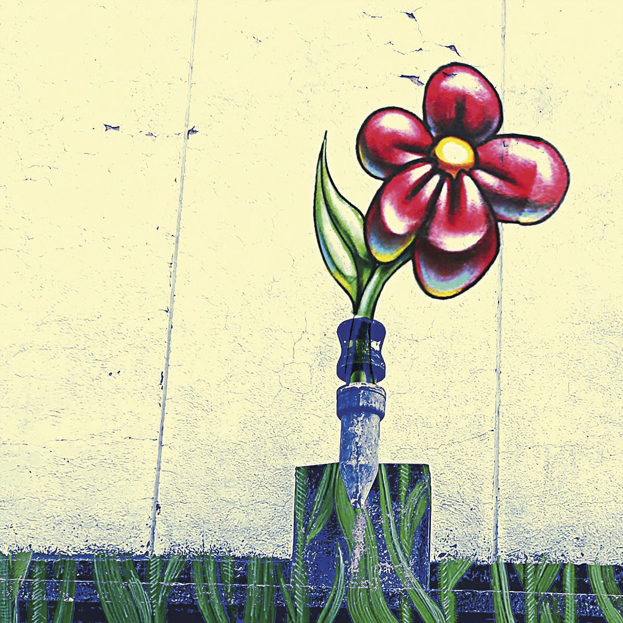 Une fleur de toit